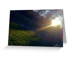 Nature Lights our Path Greeting Card