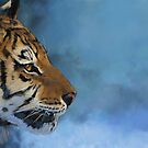 Tiger - exploration in colors by David Sourwine