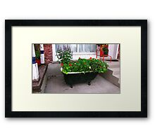 A Tub of Flowers! Framed Print