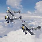 Gloster Gladiator Formation by coldwarwarrior