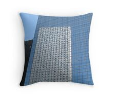 Reflections of Awesomeness Throw Pillow
