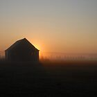 Sunrise in the Fog by Gisele Bedard