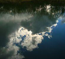 Cloud Reflection by Carol Dawes