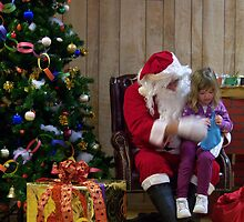 Alki Lodge Santa 2299 by Kristin Bennett