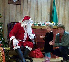 Alki Lodge Santa 2281 by Kristin Bennett