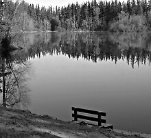 Come sit, enjoy the beauty by Kathy Yates