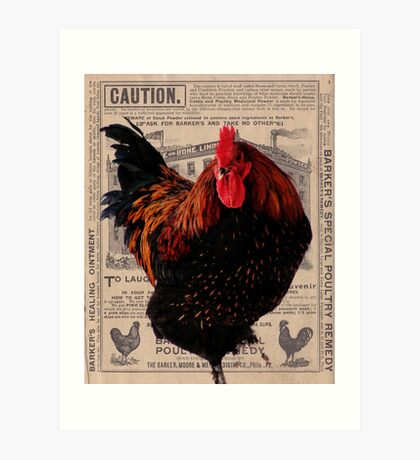 Barker's Special Poultry Remedy Art Print