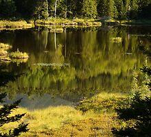 Baxter Pond by Alana Ranney