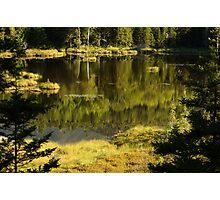 Baxter Pond Photographic Print