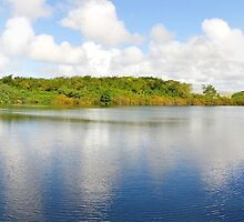 a wonderful Mauritius landscape by beautifulscenes