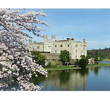 Of Castles and Cherries Photographic Print