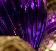 Purple Joy by Johanne Brunet