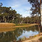 Edward River at Deniliquin by Darren Stones