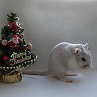 Santa forgot to visit................ by Squealia