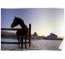 Cold Morning, Connecticut, USA Poster