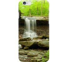 Blue Hen Falls Ohio iPhone Case/Skin