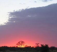 an unbelievable Botswana landscape by beautifulscenes