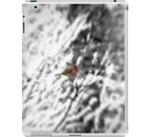Winter Bird iPad Case/Skin