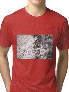 Winter Bird Tri-blend T-Shirt