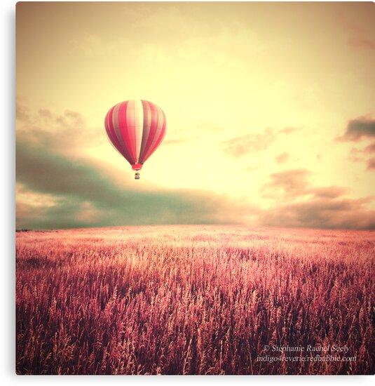 Letting Go by Stephanie Rachel Seely