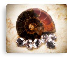 Madagascar Ammonite and Diamonds Metal Print