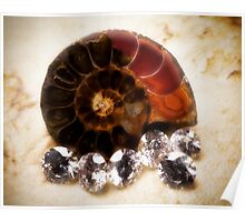 Madagascar Ammonite and Diamonds Poster