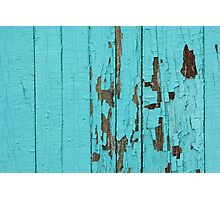 The texture of old wood with paint peeling off. Old wall. Aqua wall. Photographic Print