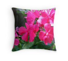 Steaming Pinks in my Garden Throw Pillow