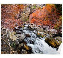 American Fork River Poster