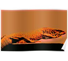 Savannah Monitor Poster