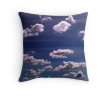 Migration Throw Pillow