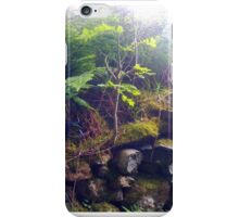 Sapling on a Stone Wall iPhone Case/Skin