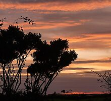 Cumbrian evening Sky by jaygooden