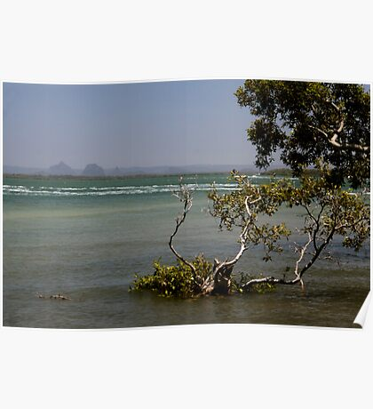 Pumicestone Passage and the Glasshouse Mountains Poster