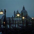 Santa Maria Della Salute - Venezia by Lidia D'Opera