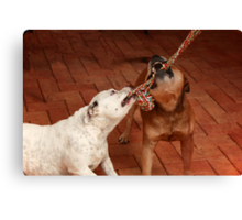 Friendship is Sharing a Rope Canvas Print
