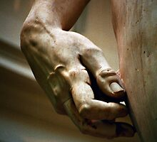 Michaelangelo's David in detail - Firenze by Lidia D'Opera