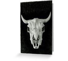 Buffalo Skull Greeting Card