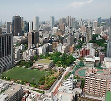 The View from Tokyo Tower  by jojobob