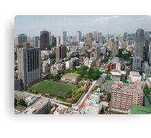 The View from Tokyo Tower  Canvas Print
