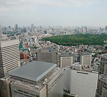Tokyo Panarama  by jojobob