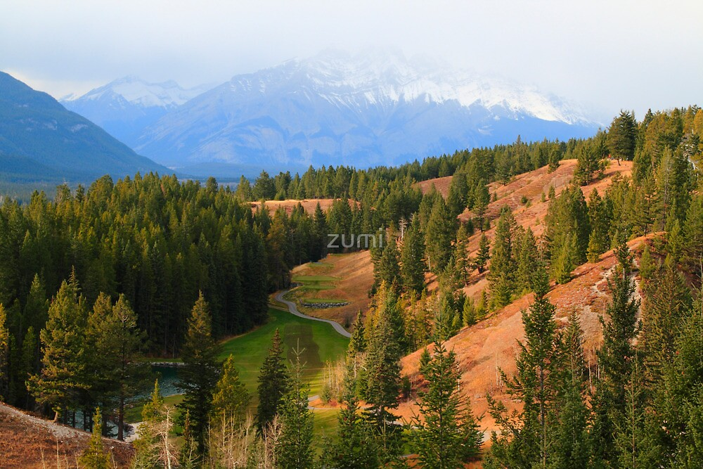 Approaching winter by zumi