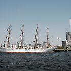 Old Boat in Tokyo Waters  by jojobob