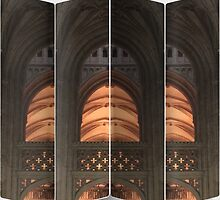 Cathedral Screen by DeneWest