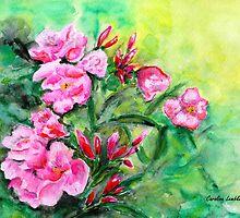 Pink Oleander by Caroline  Lembke