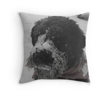 All I Want For Christmas.... Throw Pillow