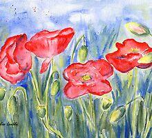 Poppies by Caroline  Lembke