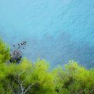 Sea View by Ingrid Funk