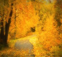 The Pathway of Fallen Leaves by Tara  Turner