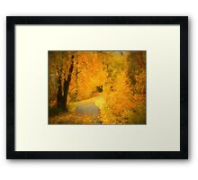 The Pathway of Fallen Leaves Framed Print